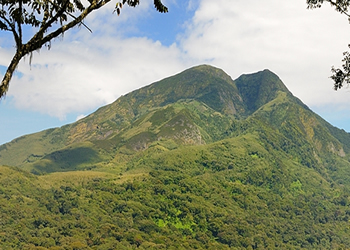 Mountaineering in Kahuzi Biega National Park