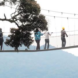 Canopy Walks in Nyungwe Rwanda